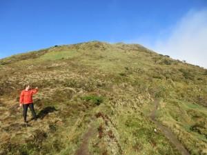 Pico da Vara