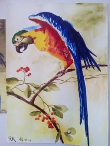 6. lekce Akvarel podle předlohy