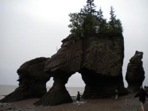 Bohužel bylo špatné počasí, ale tyto skály nazvané Hopewell Rocks jsou zajímavé tím, že se každých 6 hodin zalijou vodou. Místo v Novém Brunswicku je jedno z nejvyšších přílivů.